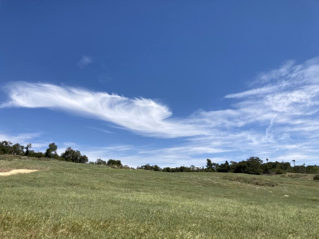 A grassy hillside swooping up to strange, marestail clouds scudding through the sky.