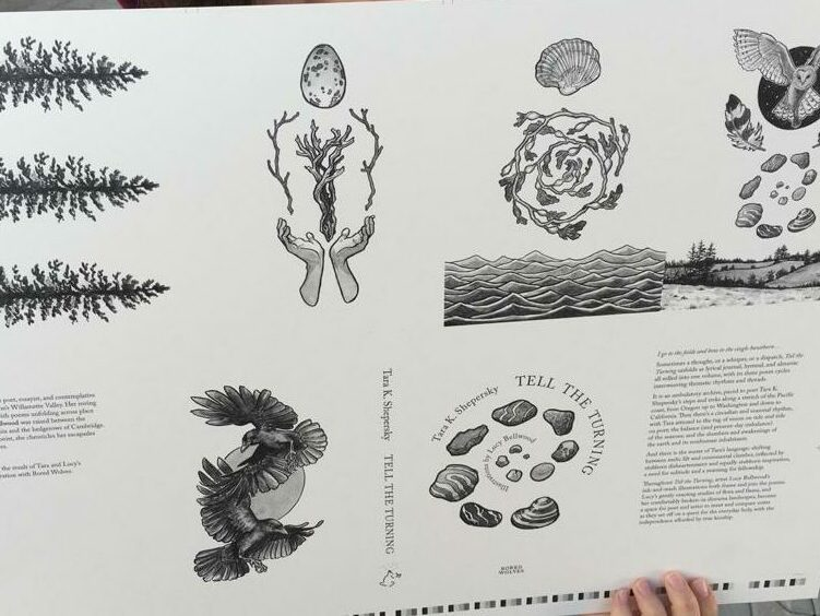 A black and white sheet with several illustrations aligned with text, all pages from the book Tell the Turning. There are crows and owls and spirals of kelp—all pictures of things from the natural world.